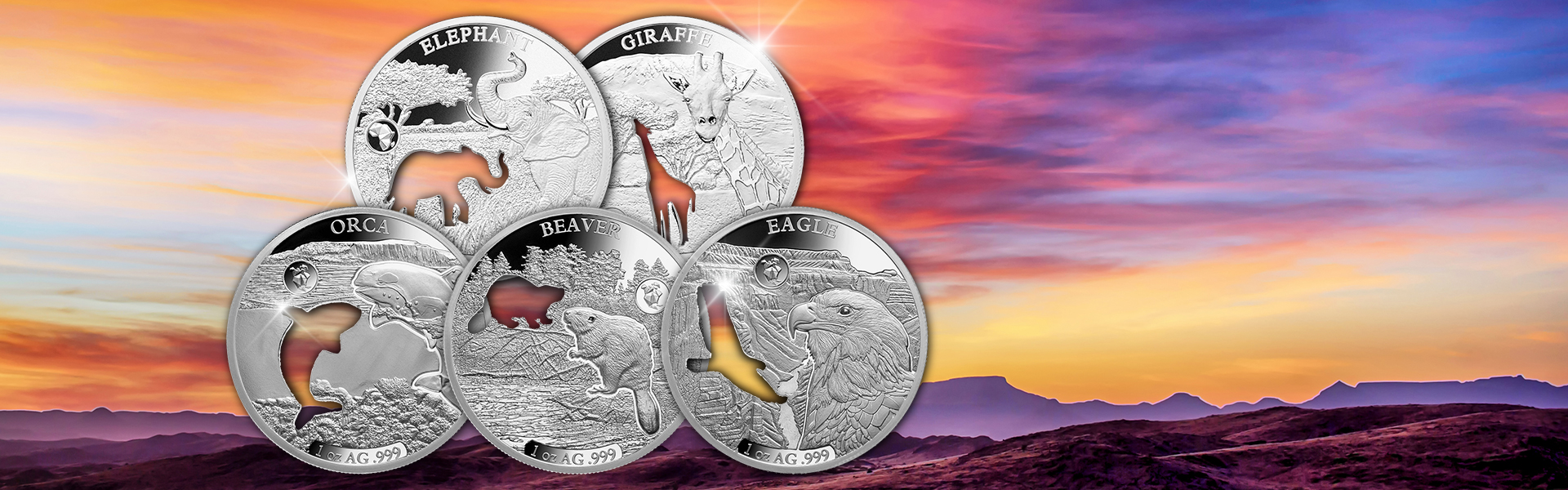 High Relief Cut-Out Silver Coin